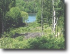 50.47 Acres Wooded with Lake View