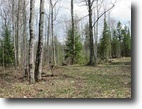Michigan Hunting Land 27 Acres Parcel F Section 16 Rd at M28, MLS#1101286