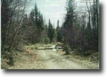Michigan Hunting Land 40 Acres TBD off Ned Lake Rd., MLS# 1101276