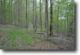 25 acres in Richford NY near State Forests