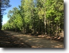 Mississippi Hunting Land 41 Acres Land For Sale- McGee Rd. Starkville, MS