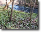Michigan Hunting Land 13 Acres Parcel A on M-28, Mls# 1101586