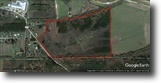 59 Acres for Sale in Webster County, MS