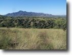 36+/- Acres of Resi Land in Patagonia, AZ