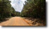 Mississippi Hunting Land 14 Acres Land For Sale: E. Box Rd. Mathiston, MS