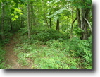 5.19 Acres Wooded in Clay County