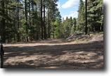 1.25 acres in Jemez New Mexico