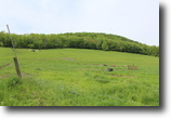28 acres Organic Farmland near Ithaca NY