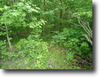 7.92 Acres Wooded in Clay Co.