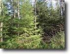 Michigan Hunting Land 10 Acres TBD Murphy Rd., Covington, MLS# 1101803