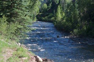 Michigan Creek, claim creek