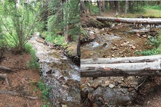 Johnson Creek also on the claim