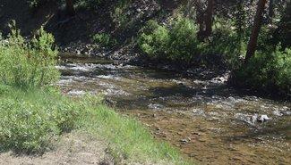 Carson River, claim river