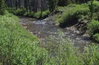 Carson River claim river