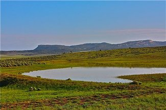 Beautiful Northern NM Property with home/lakes, mountains/hunting/cattle and horse grazing
