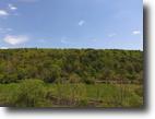 76 Acres Timberland Newark Valley NY