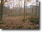 2.10 Acres Totally Wooded in Putnam Co.