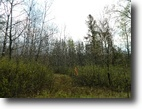 Wisconsin Land 5 Acres Potawatomi Estates, Barnes, WI
