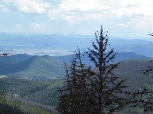 claim area views colorado
