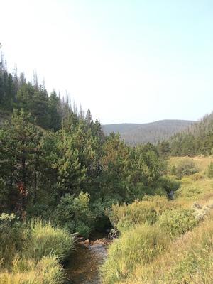 claim creek and views colorado