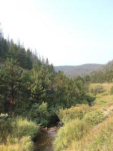 Claim creek and views