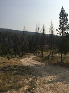 Side road leading to large, cleared camping area
