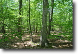 102 acres Timberland in Pine Bush NY
