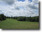 51.58 Acres In Metcalfe County, KY