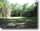 60 Acres In Adair County, KY
