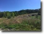 70+/-acres in Elliott Co. KY $80,000