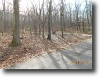 Beautiful  Wooded Lots (100' X 150')