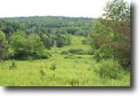 23 acres near Ithaca NY borders Forest