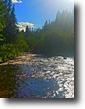 15.5 Acres with Creek Bonner County Idaho
