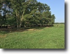 Georgia Ranch Land 126 Acres Cattle Ranch For Sale