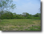 Texas Ranch Land 96 Acres 95.88 Ac. Brownsville,Tx Development Land