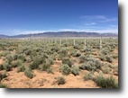 40 Acres for Sale, Hwy. 47, Belen, NM