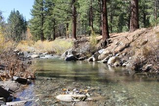 Silver Creek, on the claim creek