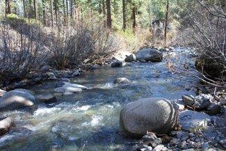 On the claim creek