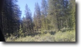 Nice 1.1 acre in Lapine Oregon!!