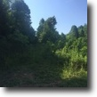 Kentucky Hunting Land 42 Acres Excellent Hunting $54,900 42