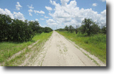 Florida Land 761 Acres Sears Grove