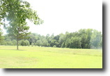 Picture perfect 4 acre tract