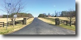 Maryland Farm Land 222 Acres Absolute Real Estate Auction: 7 Tracts