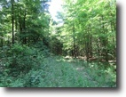 85 acres Hunting Land near Potsdam NY