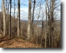 Tennessee Land 45 Acres 45.28 Ac Ensor Hollow Road/Granville, TN
