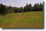 Wisconsin Hunting Land 60 Acres Wascott, Wi