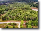 14 Acres+ in Walton County Ready for Your