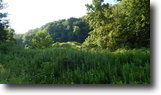 West Virginia Land 23 Acres 1 Route 36 & Amma Road   MLS 103433