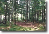Wisconsin Hunting Land 9 Acres Town of Gordon, Wi