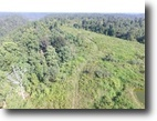 Tennessee Farm Land 23 Acres 22.72Ac S. Fork Rd. Whitleyville, TN